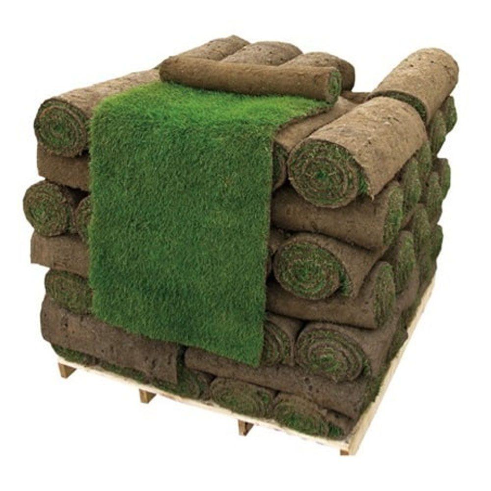 rullgräs